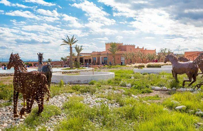 Photographes de voyage professionnels vous accompagnent à Marrakech